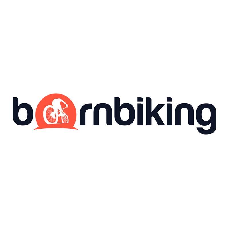 Halo Track lockring alloy